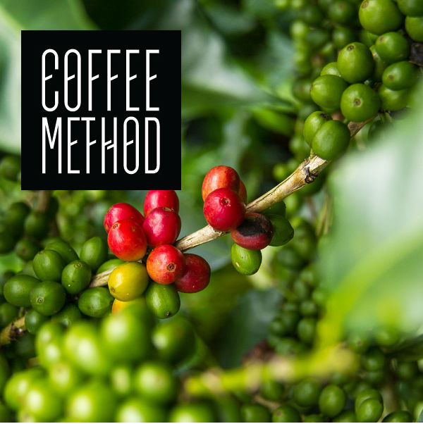 Coffee Method coffee Guatemala